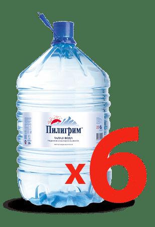 Питьевая вода пилигрим 19 литров одноразовая тара - 6 бутылей